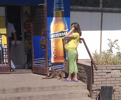 """Вход в магазин """"Русь"""" на ул. Шкадинова. Кто знает, что окажется на уме у этой собаки, если на пороге окажетесь вы?"""