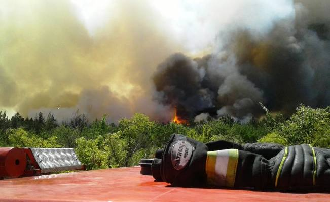 Пожар нагоре Карачун: огонь уничтожил 4 гектара леса