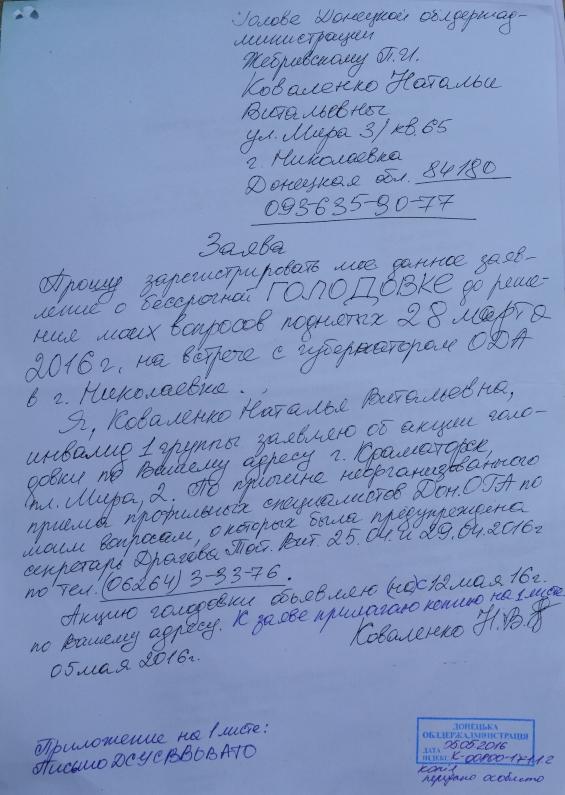 На ступеньках Краматорского горсовета женщина устроила одиночный пикет и объявила голодовку, фото-1